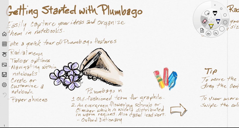 Plumbago cropped