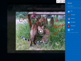 Microsoft details how to build apps with windows ink - onmsft. Com - april 6, 2016
