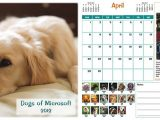 Microsoft's cats, dogs of microsoft calendars are popular fundraisers - onmsft. Com - december 28, 2016