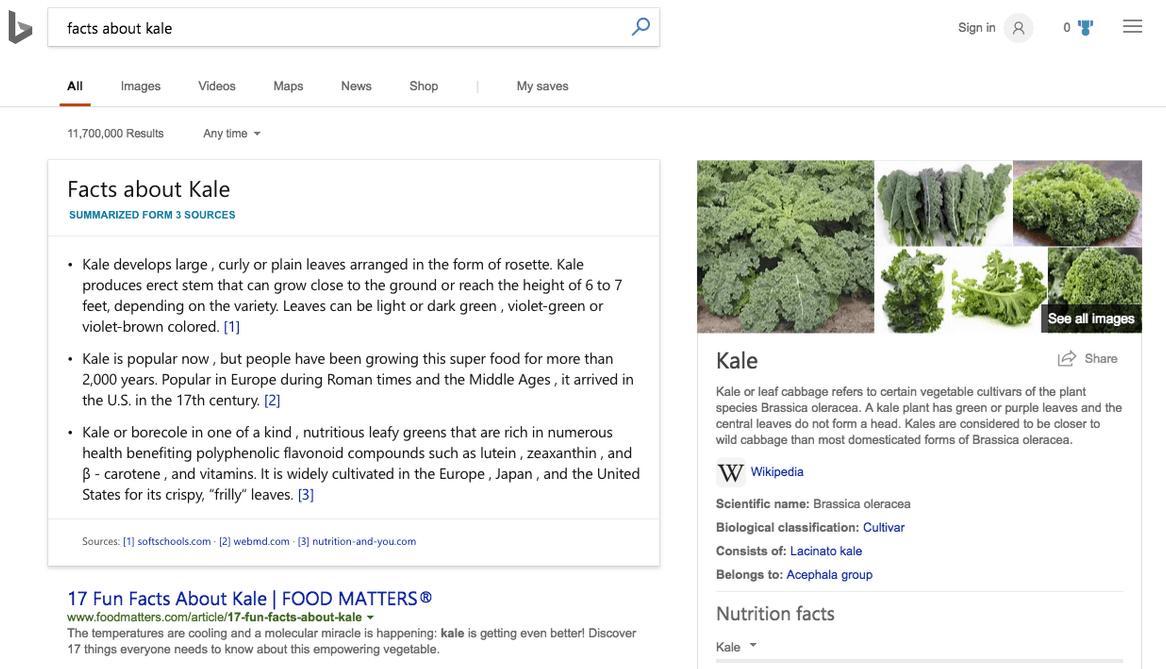Microsoft, Bing, Search