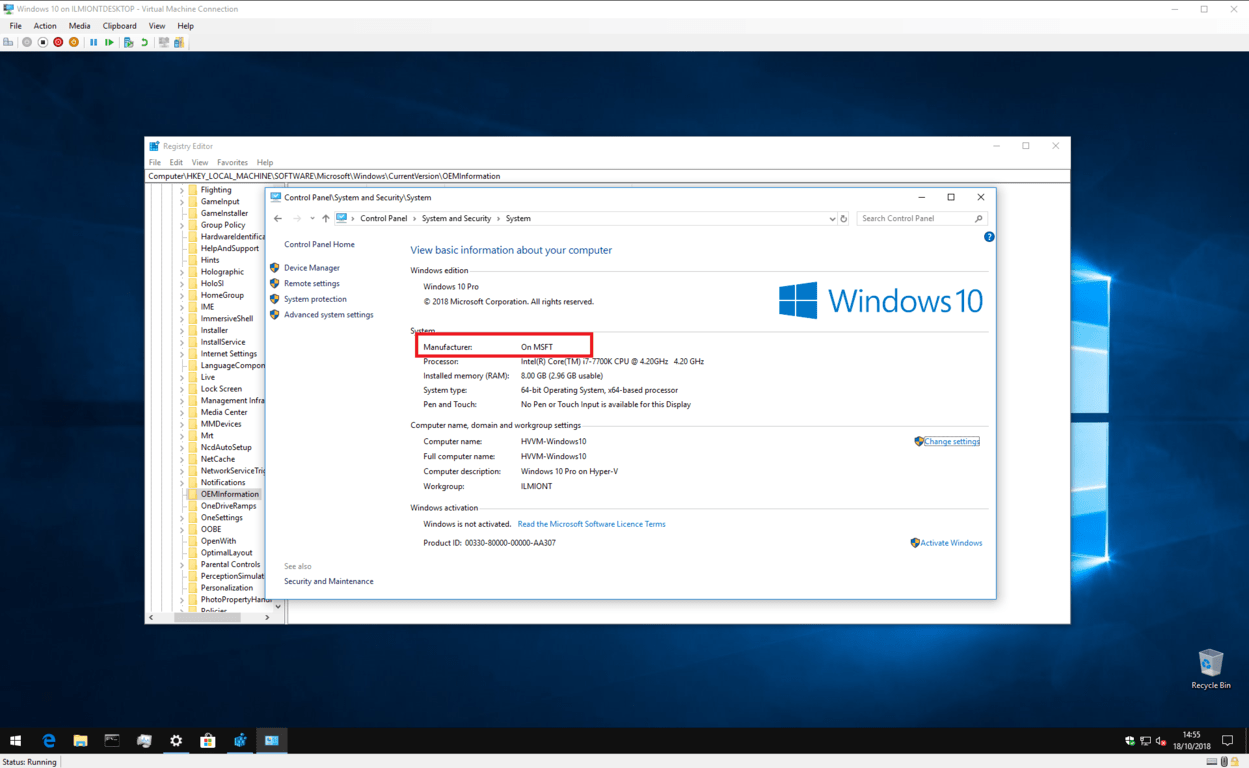 Screenshot of Windows 10 System information with custom details