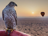 Looking for exotic Microsoft Teams backgrounds? Try these from Dubai Tourism OnMSFT.com June 11, 2020