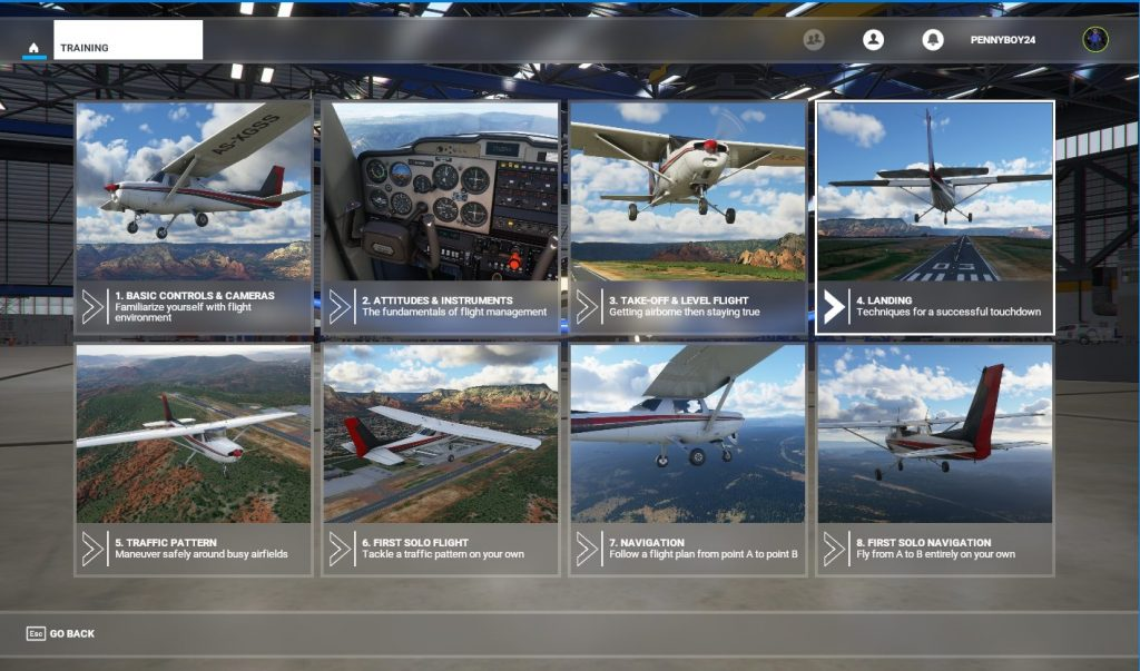 Microsoft Flight Simulator Training