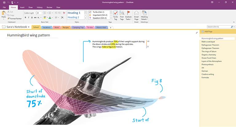Onenote Desktop App