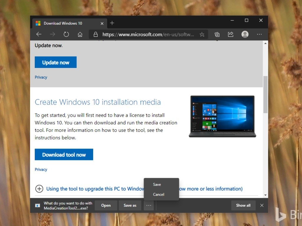 Microsoft Edge download options