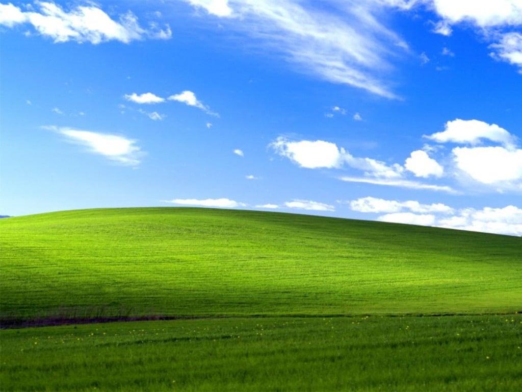 Windows XP Bliss wallpaper
