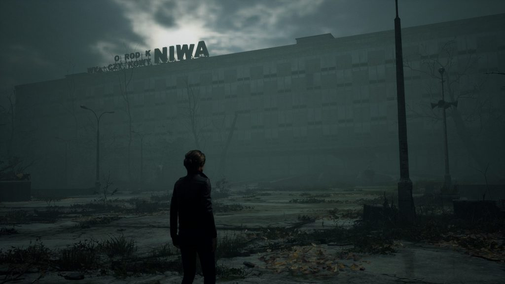 The Medium Niwa Complex