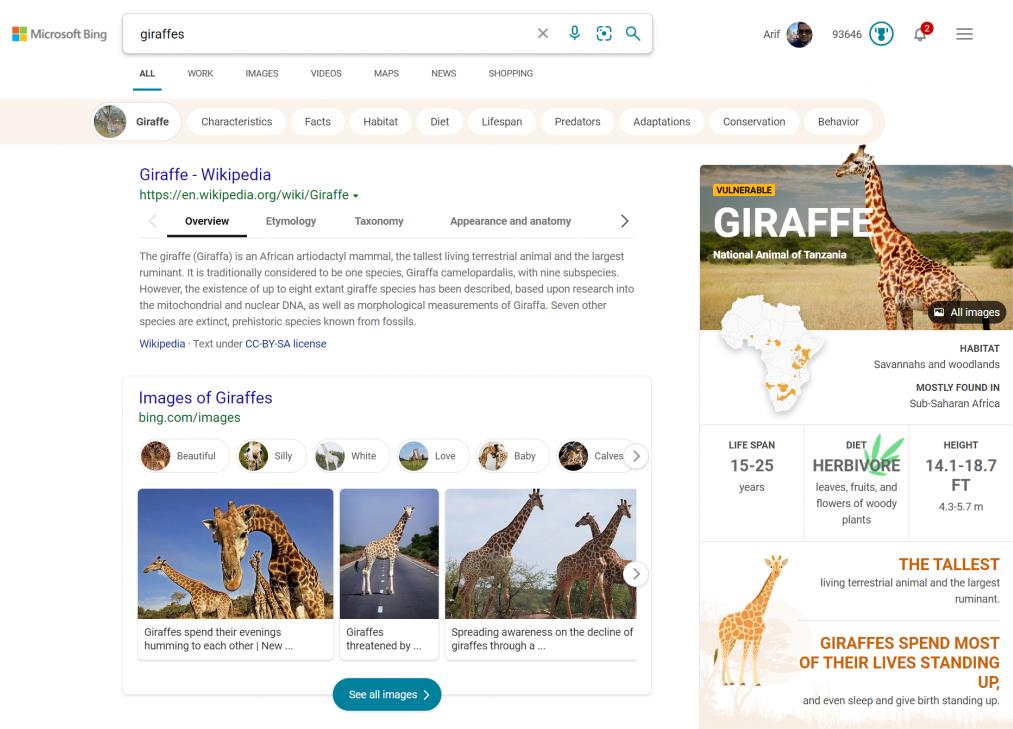Bing Giraffe