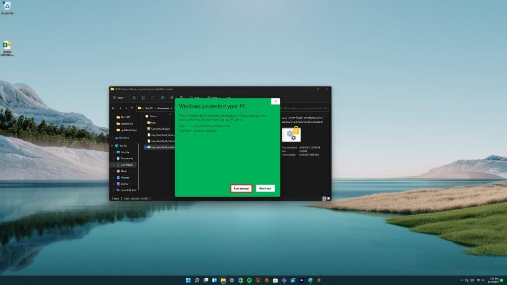 Windows 11 clean install