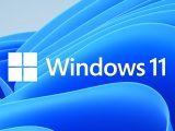 Windows 11 build